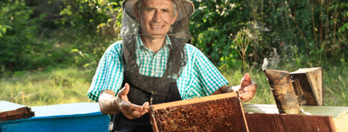 Beekeeping Loan | Farmer