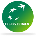 Teb Hakkinda Teb Investment